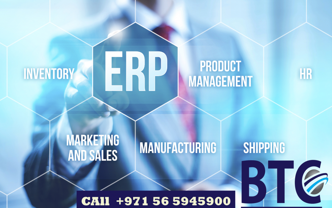 The Effectiveness of ERP for the Small Businesses