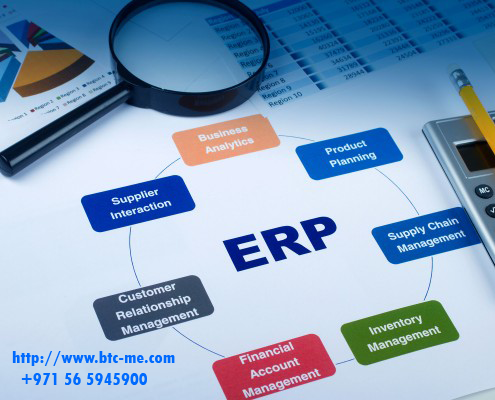 Organization of Enterprise Resource Planning (ERP) around Customer Satisfaction