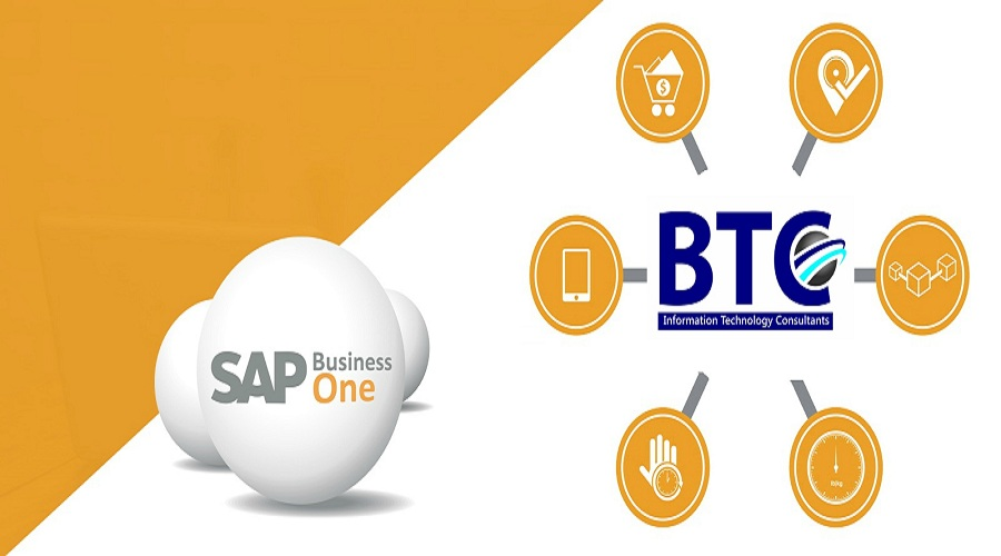 Why should SMEs not run SAP Business One in the Cloud?