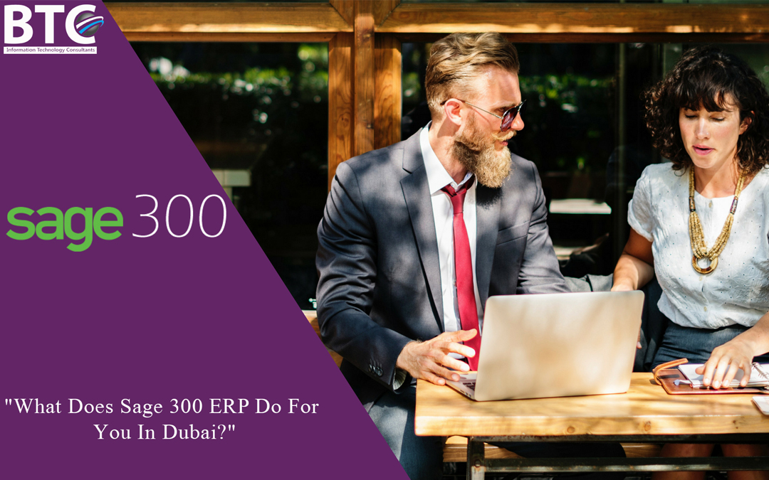 What Does Sage 300 ERP Do For You In Dubai?